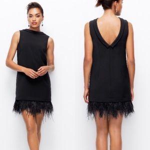 NWT Ann Taylor Sleeveless Black Feather Hem Dress